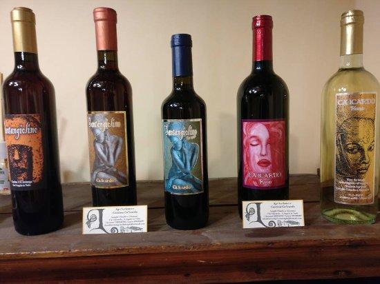 Sant'Angelo in Vado, Italia: I vini locali in esposizione