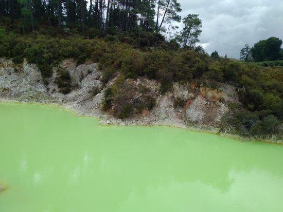 Wai-O-Tapu Thermal Wonderland: Devil's Bath
