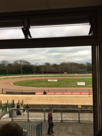 Wolverhampton, UK: I've haven't been to the Dogs for years, but we went this afternoon and had a lovely time. Great
