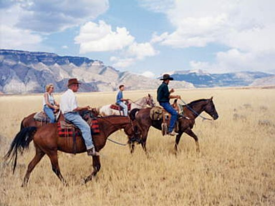 Virgin, UT: Horseback tours and cattle drives
