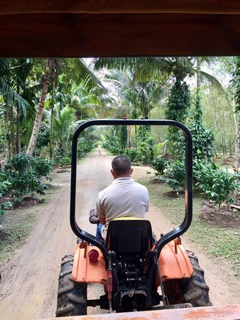 Punta Gorda, Belize : Our guide and the grounds
