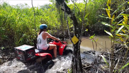 Bocas Town, Panama: trough water