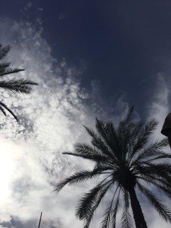 Loved the Arizona Biltmore