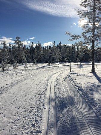 Sysslebäck, Swedia: photo0.jpg