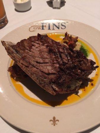 GW Fins: Tuna Collar