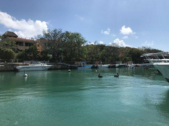 Arpon spearfishing playa del carmen : The harbor at Puerto Aventuras
