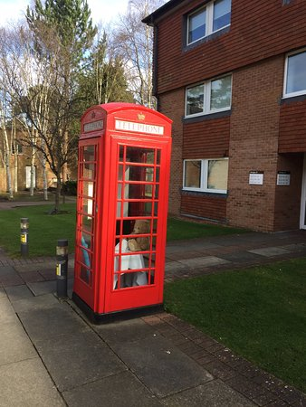Ascot, UK: Feature phone box with a teddy bear! A typical hotel room is behind.