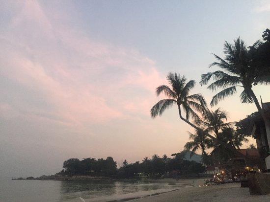 蘇梅無憂宮度假村照片