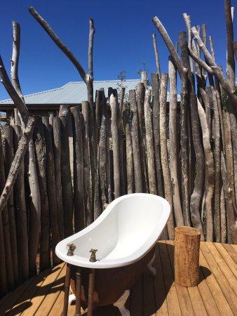 Альбертина, Южная Африка: photo8.jpg