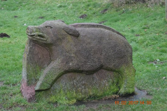 Barrow-in-Furness, UK: Carved boar on walk to cafe