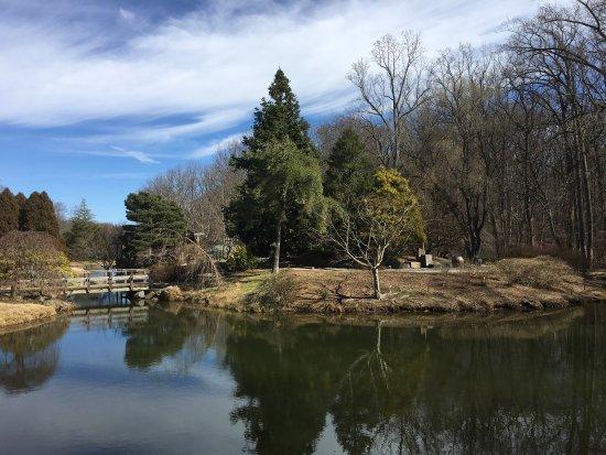 Silver Spring, MD: photo0.jpg
