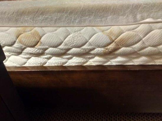 Dothan, AL:  mattress   bedding anstaine