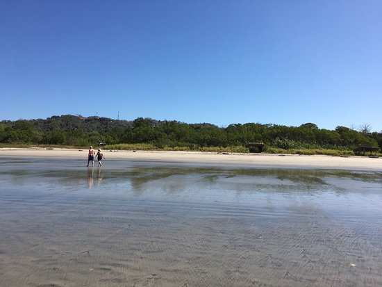 Nosara Beach (Playa Guiones): photo7.jpg