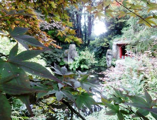 Biddulph, UK: Peering through the Maples.