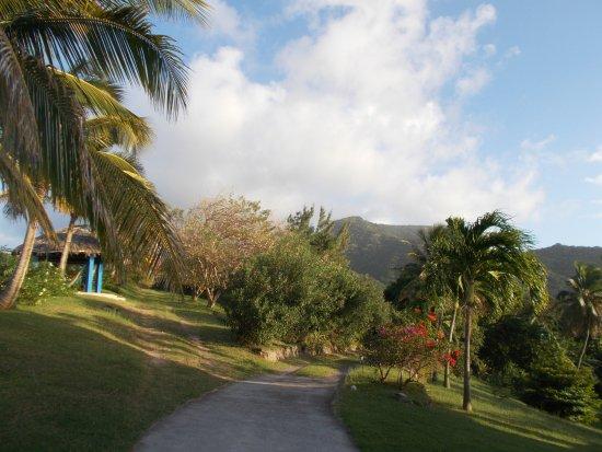 Gingerbread Hill: Il giardino dell'hotel