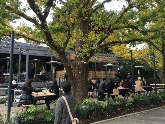 「シェイクシャック 外苑いちょう並木店(東京都港区北青山2-1-15)」の画像検索結果