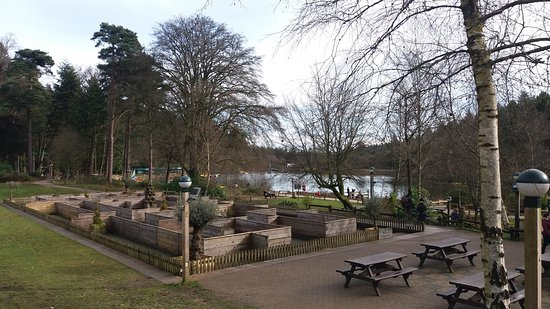 Center Parcs Longleat Forest Photo