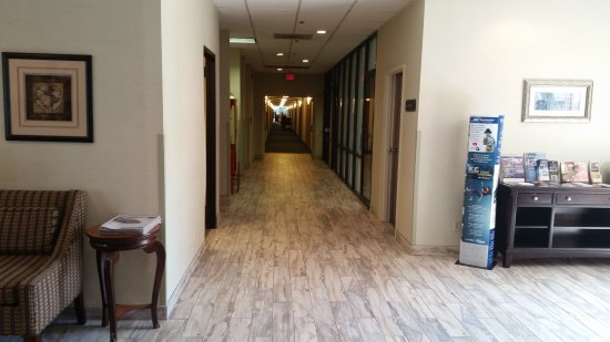 Best Western Leesburg Hotel & Conference Center: View from the lobby to the rooms at BW Leesburg (new flooring)