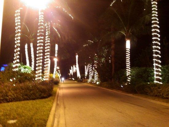 South Seas Island Resort: Christmas decorations, Florida-style.
