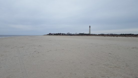 Cape May Point, NJ: tranquility