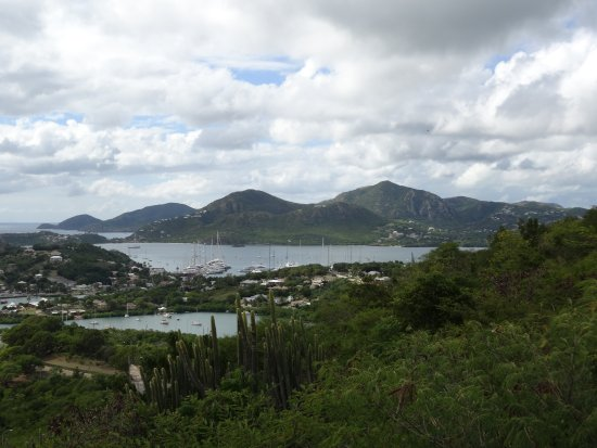 Dow's Hill Interpretation Centre: Bahia