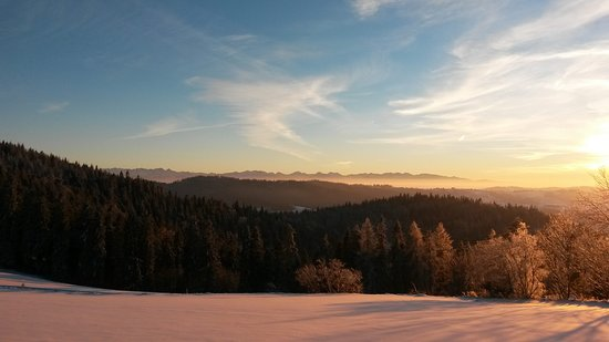 Rabka-Zdroj, Poland: Tatra Mountains seen from Maciejowa Hill top