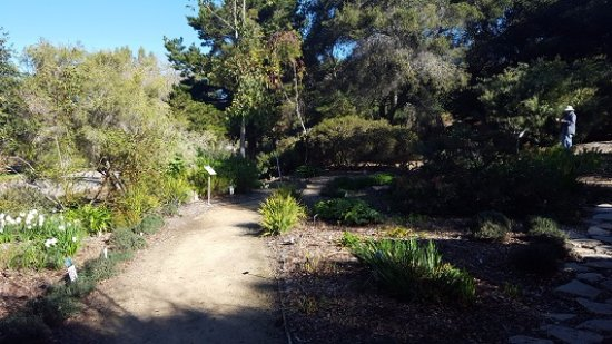 San Luis Obispo Botanical Garden: Dirt paths made for waking