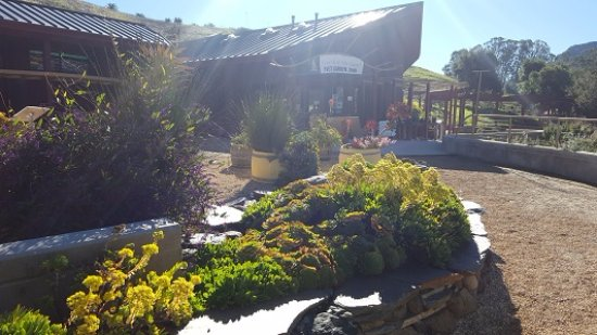 San Luis Obispo Botanical Garden: Garden shop in the distance