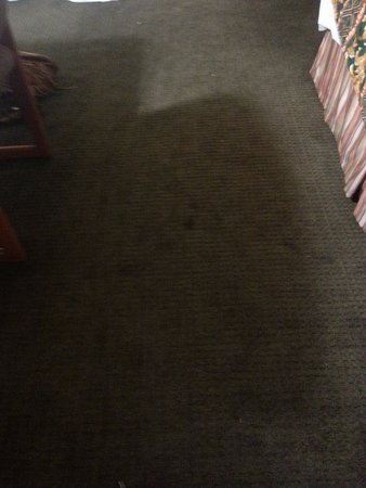 Tolleson, AZ: Carpet stained and stinky