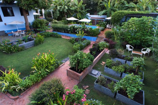 Casa Nawalli: Raised Bed Vegetable Garden