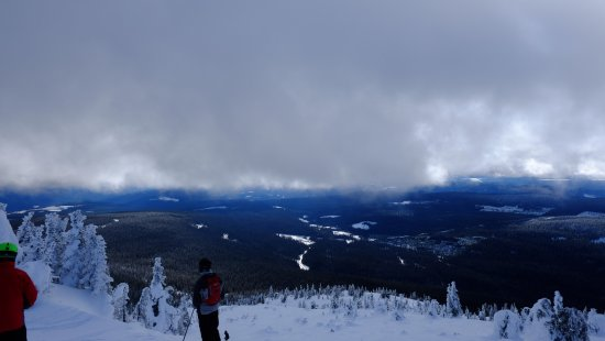 Big White, Canada: Sun Rype bowl. Note that you aren't above the tree line here, but there's lots of vertical on th