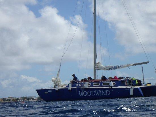 Kralendijk, Bonaire: The Woodwind always nearby