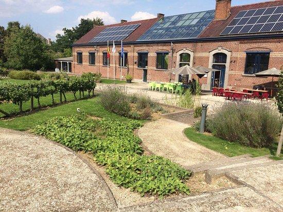 Flobecq, Belgium: Magnifique jardin