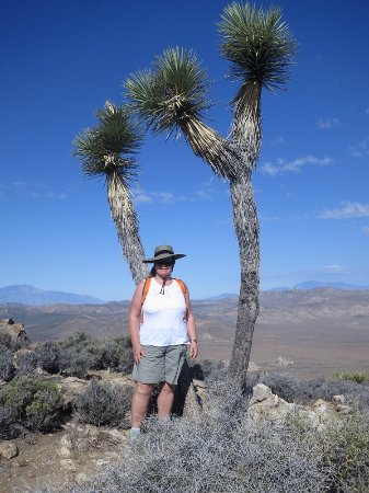 Twentynine Palms, CA: Your truly in JTNP