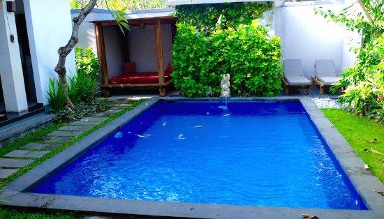 Grand La Villais Villa and Spa Seminyak: My pool