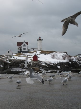 York, ME: The Nubble Lighthouse in winter