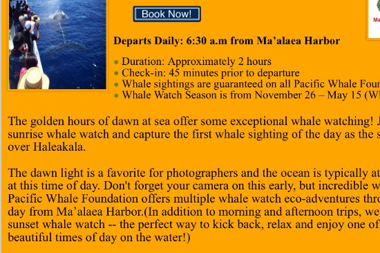 Maalaea, ฮาวาย: Proof that a sunrise whale watch is always scheduled!
