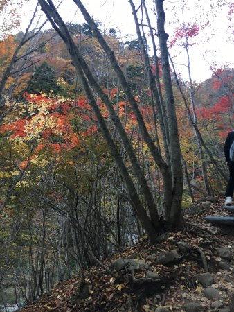Nishizawa Canyon: photo0.jpg