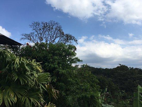 Tilarán, Costa Rica: photo3.jpg