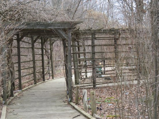 Basking Ridge, NJ: Pretty pathways