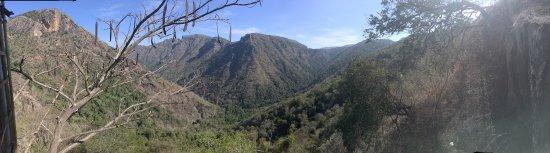 Kolli Hills照片