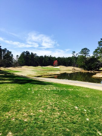 Pine Forest Country Club: photo0.jpg