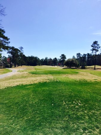 Pine Forest Country Club: photo1.jpg