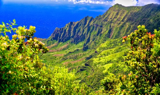 Waimea Canyon: From the top of the road.