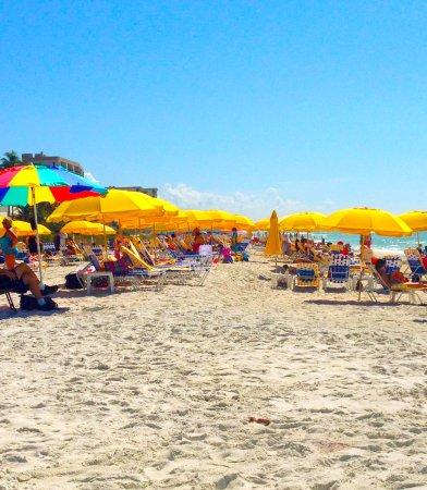 Barefoot Beach Preserve Bonita Springs Fl