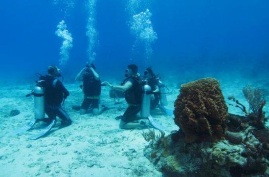 Full-Day Racha Yai Private Scuba