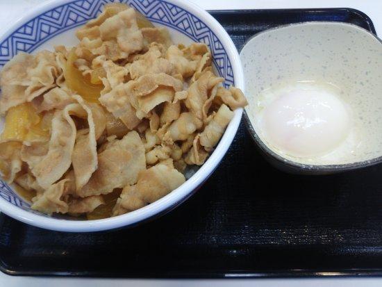 Kashiwa, Japan: 豚丼並盛と半熟玉子