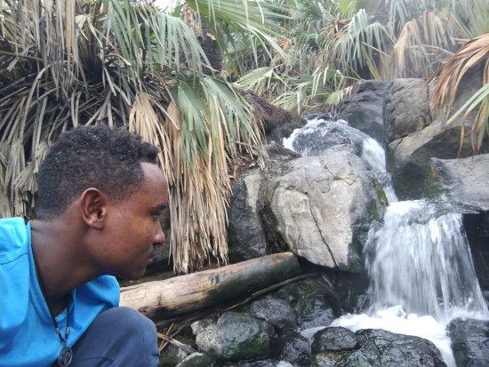 Национальный парк Аващ, Эфиопия: Awash -  Mamaru Ethiopian Tours