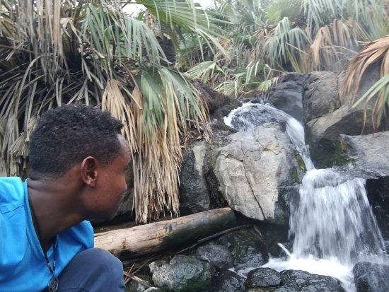 הפארק הלאומי אוואש, אתיופיה: Awash -  Mamaru Ethiopian Tours