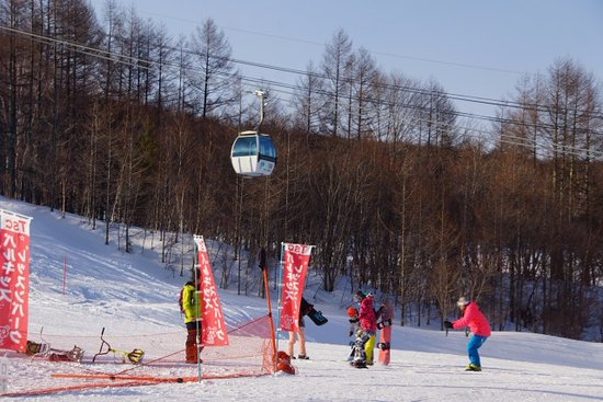 Palcall Tsumagoi Ski Resort : ゲレンデ-1